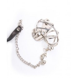 Chastity cage