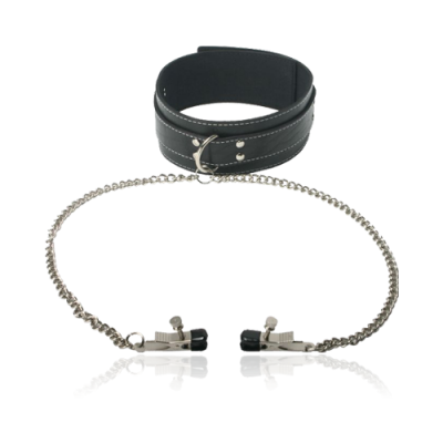 Coveted Collar and Clamp