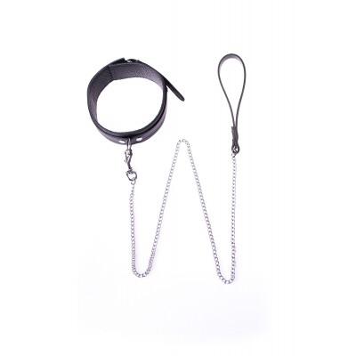 Collar Basic + Leash