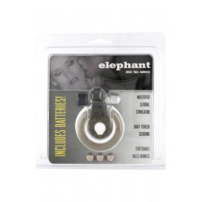 Cock&Ball Ring Elephant Jelly Vib