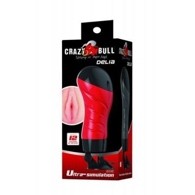Crazy Bull - Delia Anal Vibrating