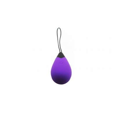 Remote Control Egg G1 - Purple